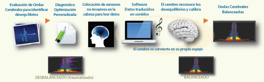 Proceso BrainWave