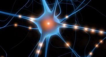 ¿Por qué es diferente la Optimización BrainWave?