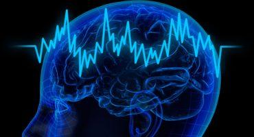 ¿Qué es la optimización de ondas cerebrales?