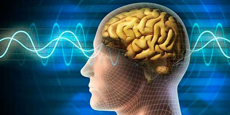 beneficios brain wave